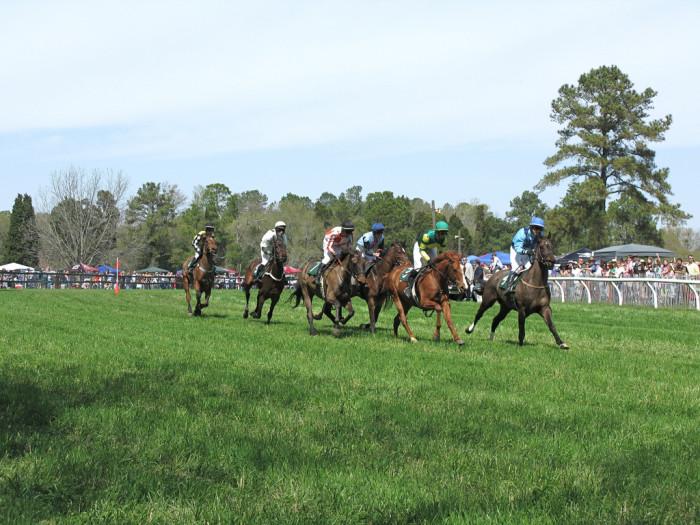 17. Horse Racing & Darlington Raceway