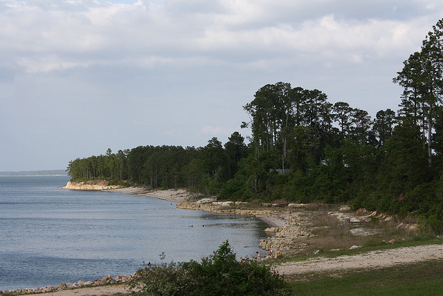 4) Lake Sam Rayburn: located just north of Jasper in the deep piney woods, the tranquility of this lake will make you want to stay all day.