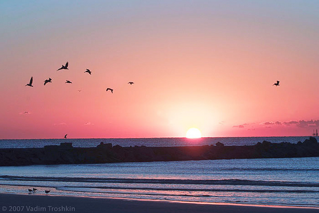 2) Nothing gets the sparks flying like a walk on Galveston Beach while watching the sun set over the water.