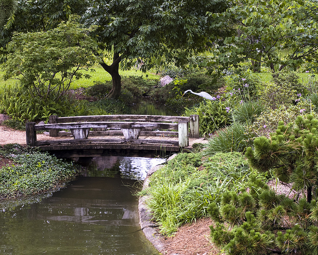 12) The small bridges and soothing sounds of water at the Japanese Garden at Hermann Park in Houston offer a quiet, natural setting to get closer to the one who stole your heart.