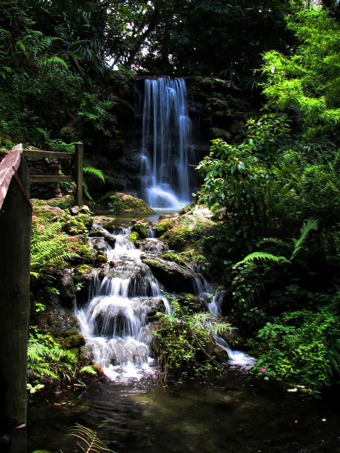 5. Rainbow Springs State Park
