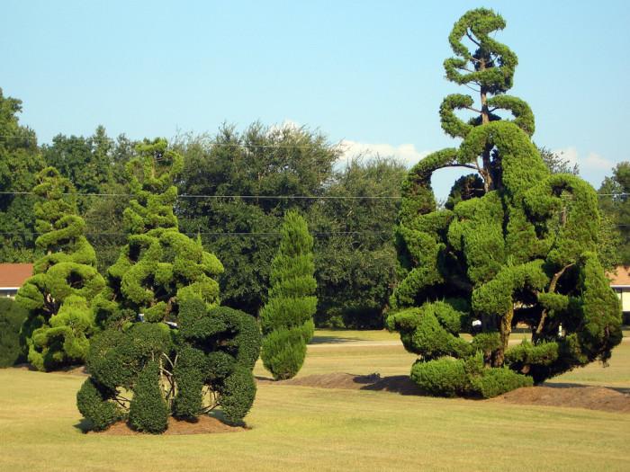 10. Pearl Fryar's Topiary Gardens