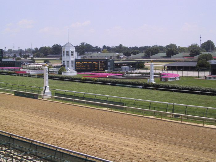 12. 50 to 1: this film about Mine That Bird, the 2009 Derby winner includes scenes filmed at Churchill Downs.