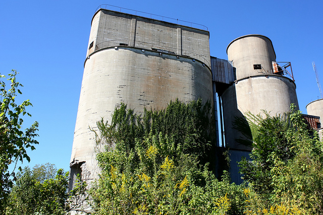 11) An old rice silo in Devers is slowly being taken over by moss and weeds.