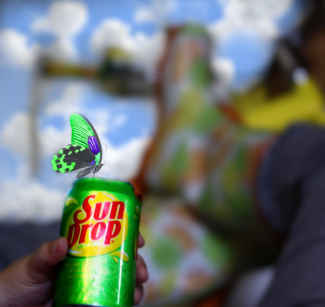 5. Sun Drop soda fresher than the rest.