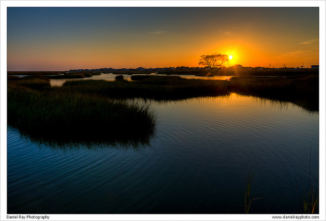 6) Texas is full of boggy bayous near the coast, and this one looks even more amazing with that golden sun behind it.