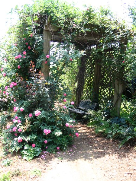 17. What is more romantic than a rose garden?