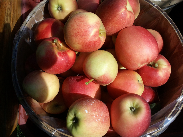 9) Michigan apples – Apples are another Michigan staple. The state's 850 family farms harvest some 30 million bushels of apples a year, and every fall, orchards and cider mills across the state open to the public for apple picking, hay rides and freshly pressed cider and donuts – a true Michigan tradition.