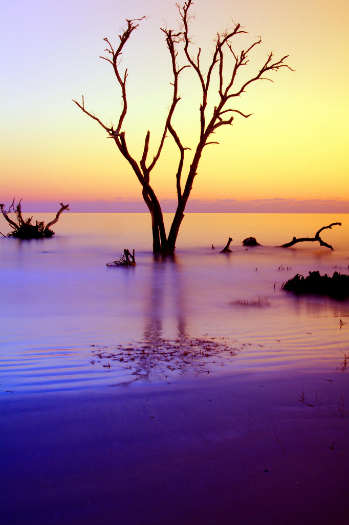 6. Warm sky sunrise over Hunting Island State Park