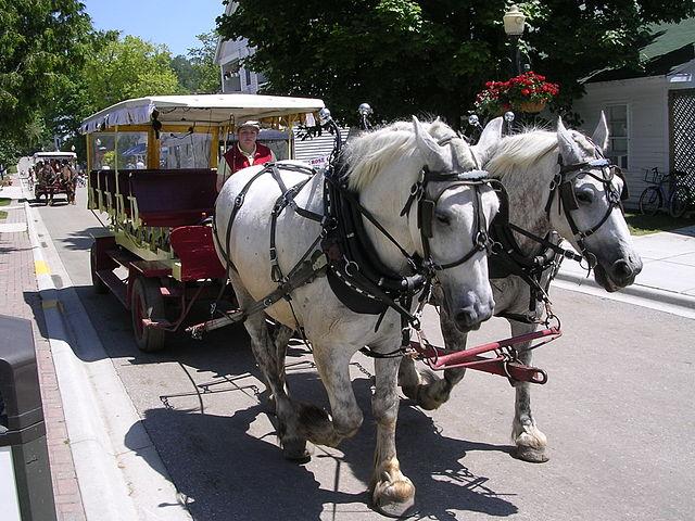 11) Mackinac Island Carriage