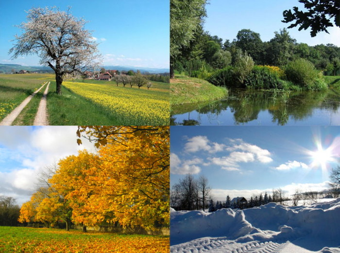 6. You also expect to experience all four seasons in almost equal amounts.