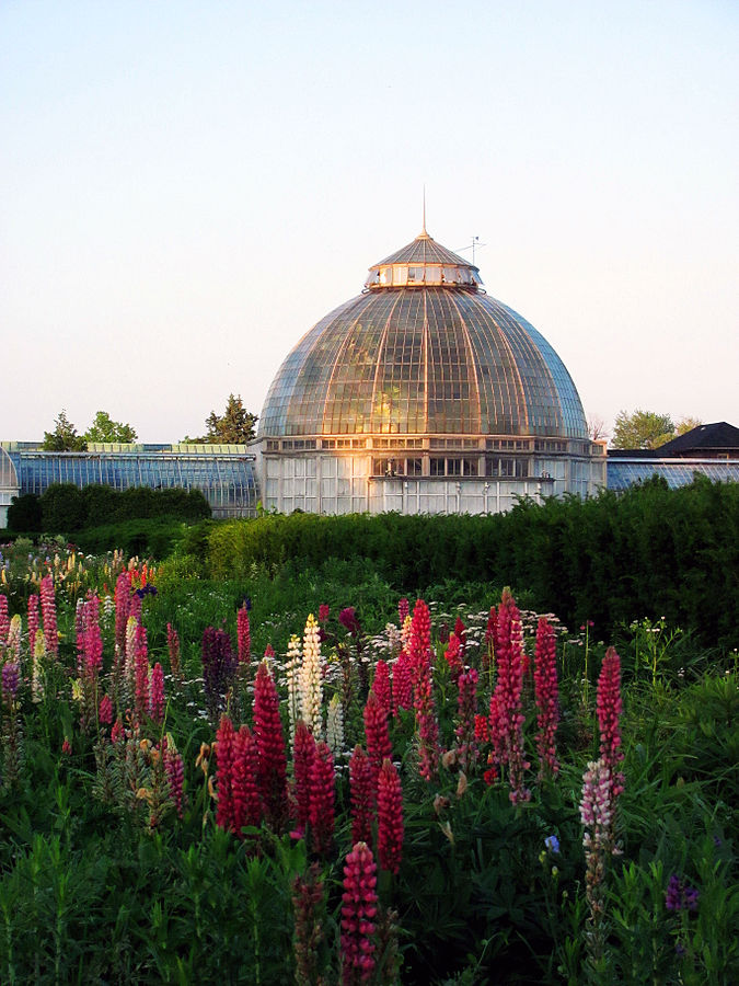 13) Belle Isle Whitcomb Conservatory
