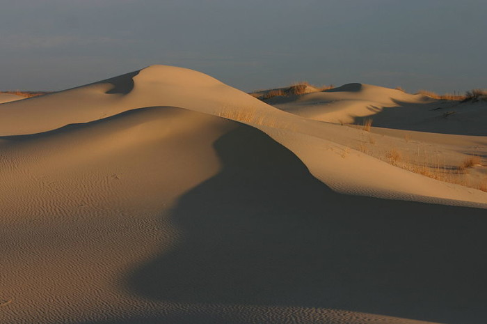 5) Surf or ride the sand dunes at Monahans Sandhills State Park just 45 minutes from Odessa and a little over an hour from Midland. Can you believe this place is in Texas?!