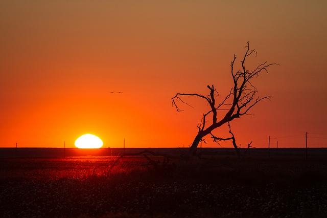 1) Sunrise: West Texas style