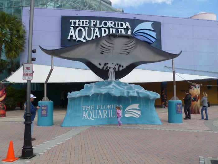 10. The Florida Aquarium