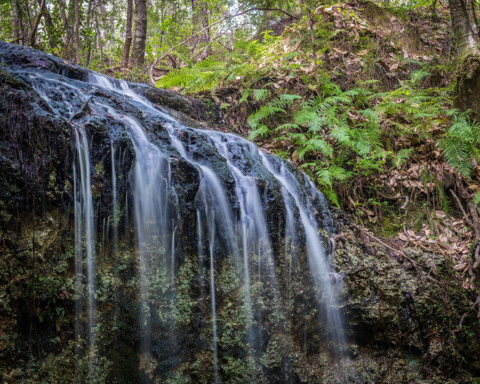 16. Falling Waters State Park