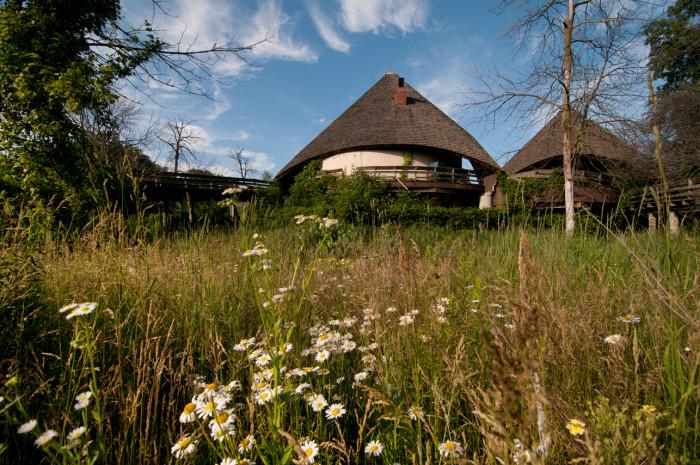 9) Belle Isle Zoo