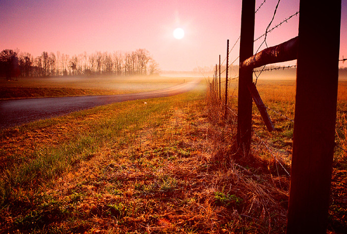 16) A Sunny Country Morning