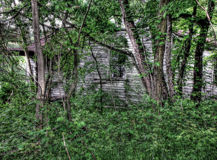 4. Hidden on Bethelem Road in Dillon's Mill, this old house has all but disappeared into the surrounding landscape.