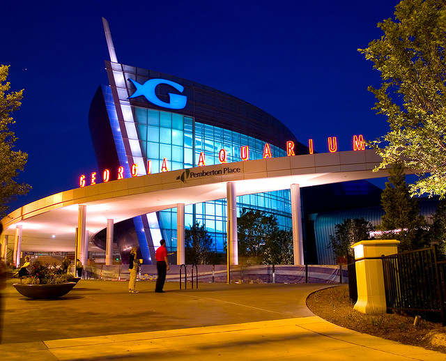 20 great things to do when you 39 re in georgia Aquarium in georgia