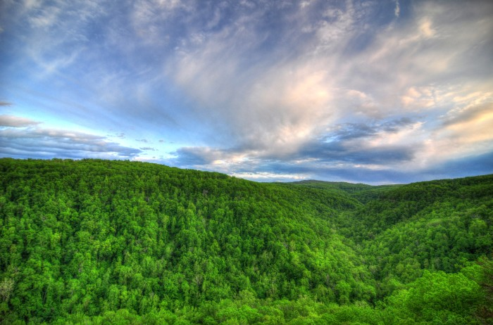 The view from Hawksbill Crag, showing off Arkansas' beautiful green scene that stretches for miles upon miles.