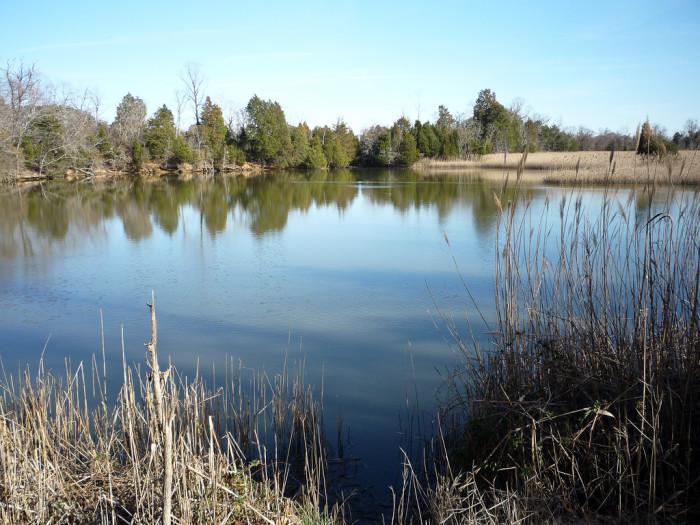 13. Lone Star Lakes Park, Suffolk