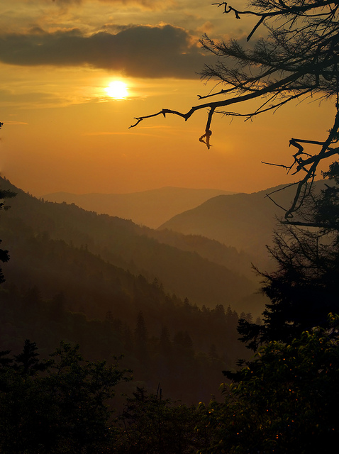 10) Morton Overlook is bathed in gold nightly with lovely sunsets like this. We see you, Tennessee. We see you.