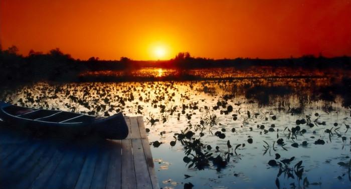 7. Okeefenokee Swamp