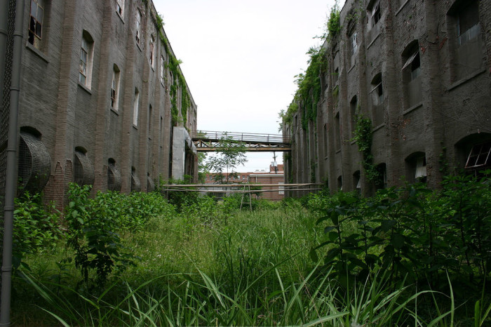 The greenery between the buildings has since become overgrown. There are still some areas that are used for storage on the property.