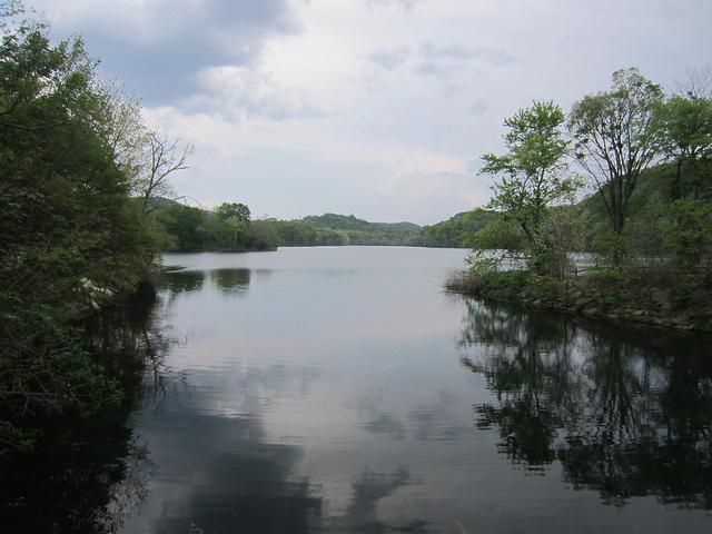 5) Radnor Lake