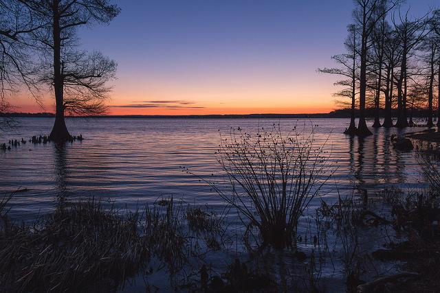 6) Reelfoot Lake