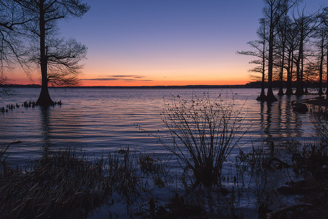 14)  Reelfoot Lake came from shaky beginnings - the lake was formed entirely from a series of earthquakes in 1811-1812