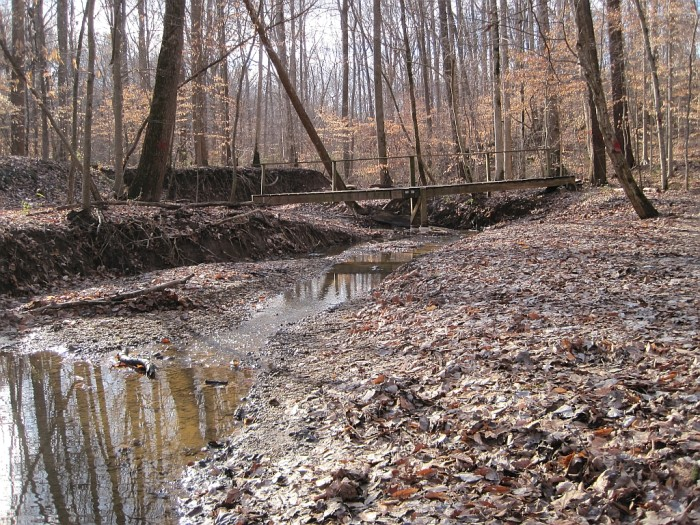 4) Meeman-Shelby Forest State Park