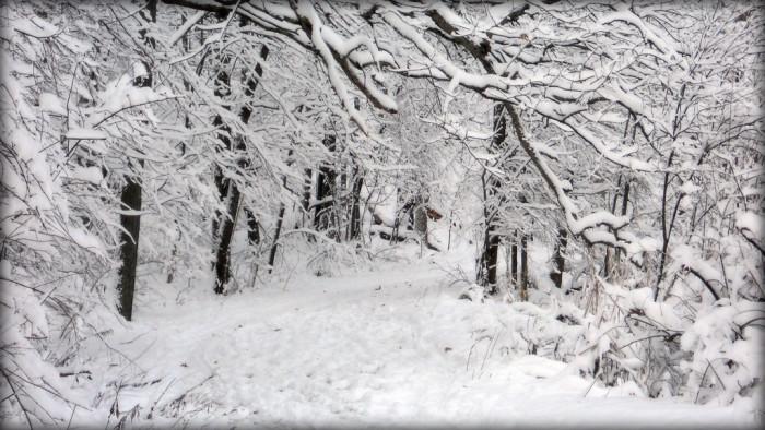 7) Snow? You mean, APOCALYPSE?!