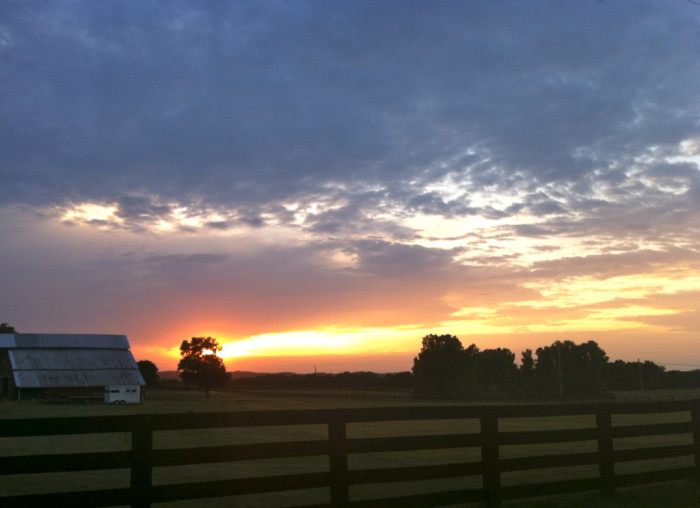 1) Williamson County is bleeding all sorts of beautiful colors with this sunset. There's just something about the day ending on the farm.