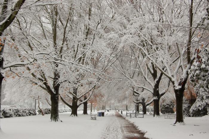 Winter in VA