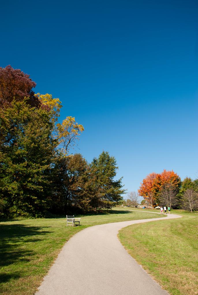 6. Go exploring through the Arboretum in Lexington