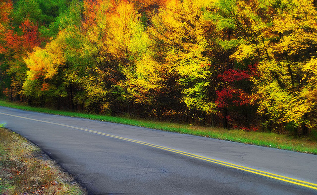 """2. Autumn in Arkansas - Driving from Little Rock to Fayetteville on the old """"Hog Trail"""" is an annual event for many locals out to view fresh fall foliage."""