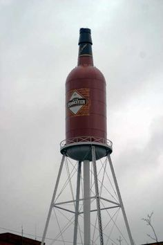 11. World's Largest Bottle of Booze