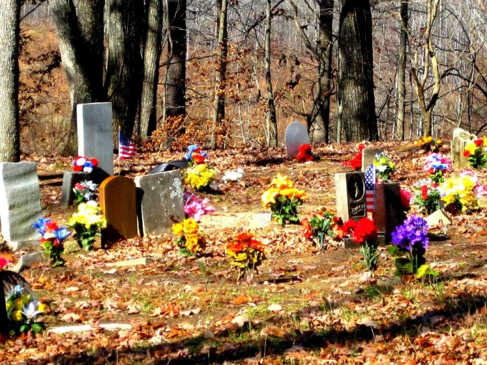 5. Coon Dog Cemetery