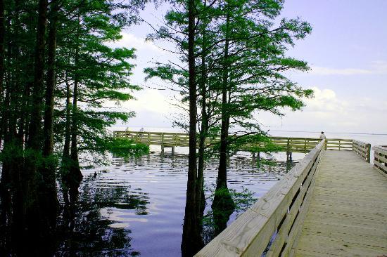 13. Lake Phelps