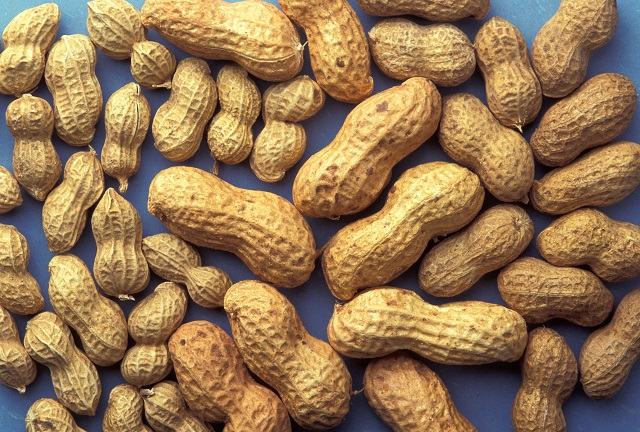 11.) In Lee County, it's illegal to sell peanuts after sundown on Wednesdays.