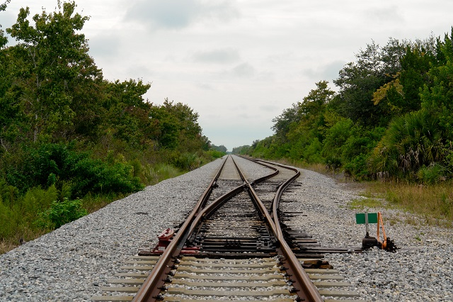 3.) Putting salt on a railroad track can be punishable by death.
