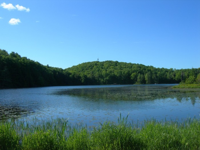 6. Timms Hill and Lake. After a long walk and picnic (don't forget the picnic!), gaze into each other's eyes while taking in the beauty.
