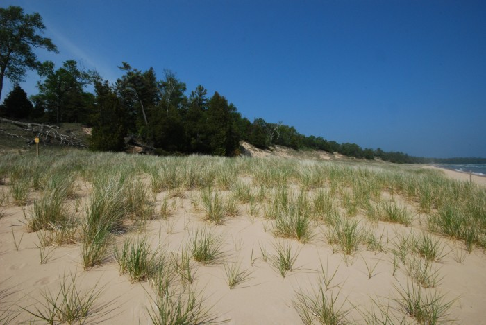12. Whitefish Dunes State Park. Gorgeous in the summer, but also pretty to snowshoe in during the winter.