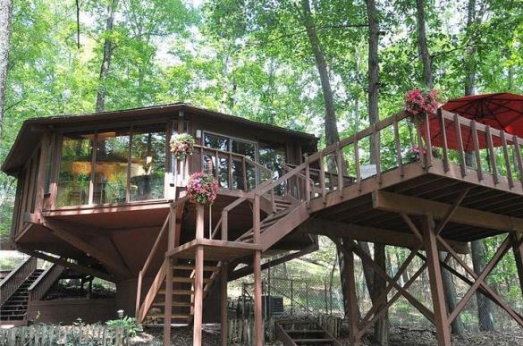 7. Topsider Treehouse, Erwinna