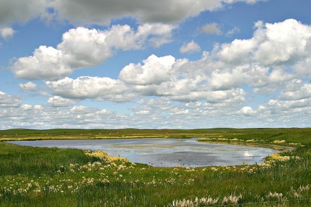 1. Missouri Coteau near Bismarck