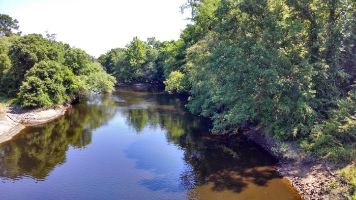 8. Deep Bottom along the Cape Fear River