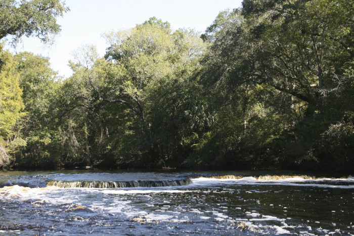 7 waterfalls you had no idea existed in florida for Steinhatchee fl fishing