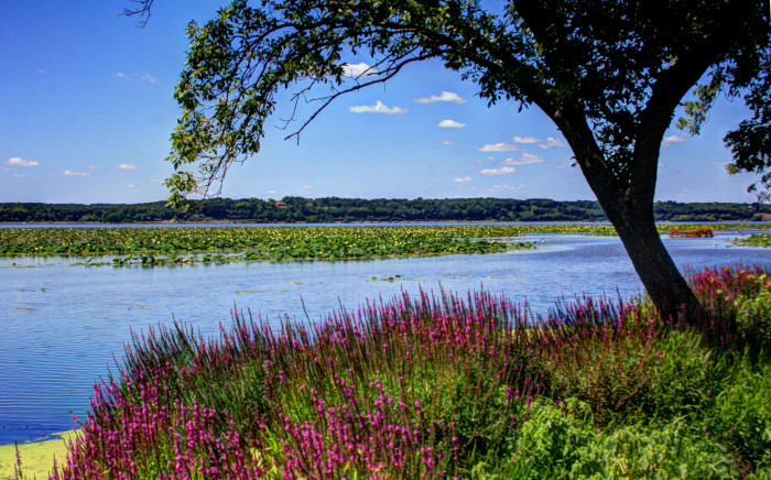 11. A gorgeous view of Iowa from across the Mississippi River
